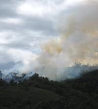 Popayán está en alerta roja por incendios forestales. Se está solicitando que las personas denuncien a quienes cometen este crimen en contra del medio ambiente y de la comunidad.
