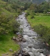 Durante la presentación de la primera fase del proyecto Uso y majeo del agua y su relación con enfermedades infecciosas emergentes en ocho municipios del Cauca.