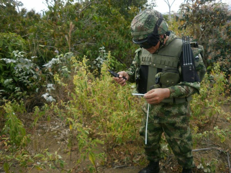 La principal problemática, en cuanto a minas antipersonal, se centra en Argelia, en el corregimiento de El Plateado, en donde ha habido mayor afectación a las tropas de la Tercera División.