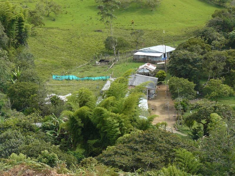 Este humedal ubicado en las faldas del cerro de Las Tres Cruces, en Pomona, de propiedad del Departamento del Cauca, se encuentra invadido desde hace varios años por una familia que ocupa aproximadamente cinco hectáreas.