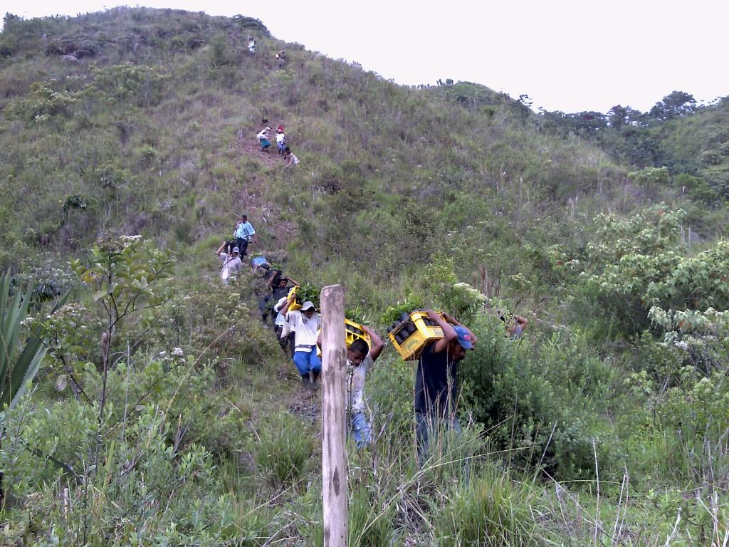 Barrero Gordillo gestionó proyectos agrícolas y emprendimientos por más de $ 5.600 millones para varios municipios del Cauca, mejorando la calidad de vida y los ingresos de muchas familias.