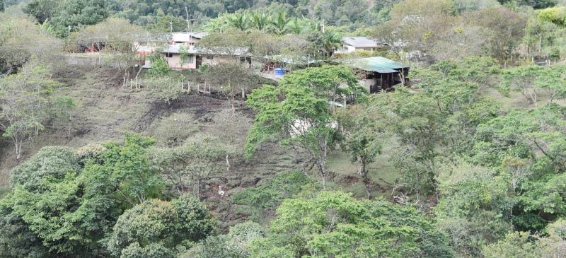 En la parcelación Santa Bárbara, vía a Coconuco, viven 31 familias víctimas y victimarias del conflicto armado en el Cauca.