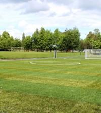 2 Cancha sintética fútbol 5