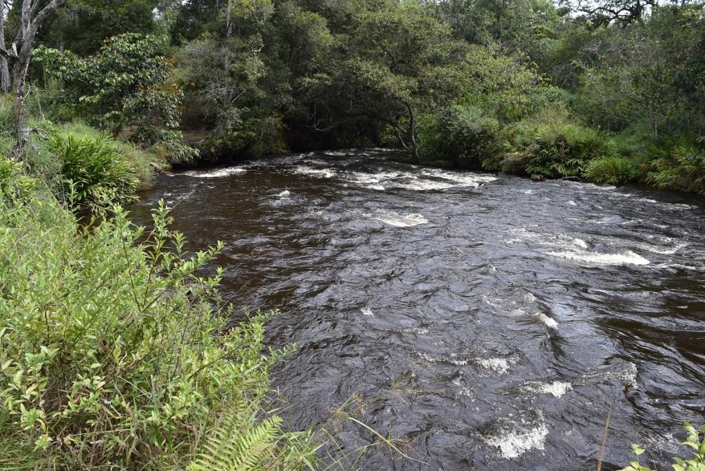 Rio Palacé. Límite oriental de la parcelación y Condominio Campestre Riveras de Palacé