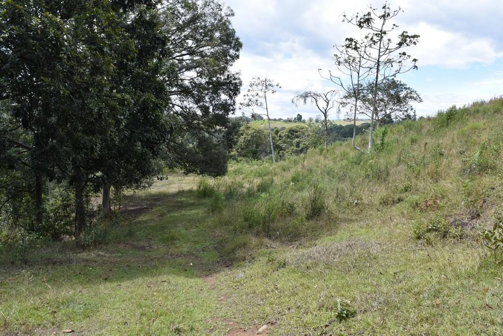 ¿Le gusta caminar? 3,5 kilómetros de senderos ecológicos.