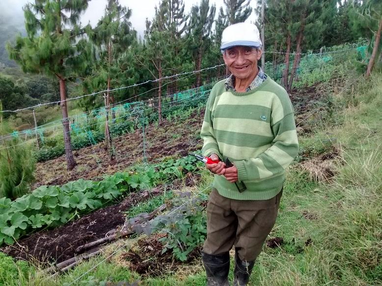 Se titularon más de 630.000 hectáreas a campesinos, comunidades indígenas y negras
