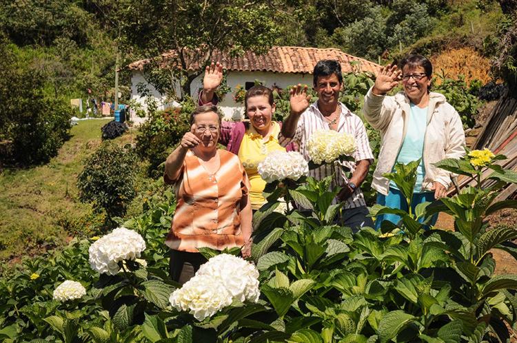 """Con """"Colombia Siembra"""", se logró pasar de 31 mil hectáreas en promedio por año durante los últimos 24 años, a 232.303 hectáreas nuevas."""