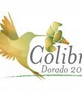 COLIBRI DORADO-01
