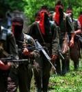 terroristas eln (1)