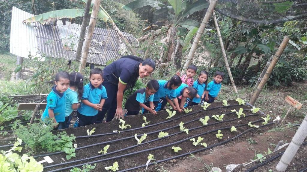 La primera cosecha, en febrero de 2017, fue fantástica, los niños granjeros estaban felices.